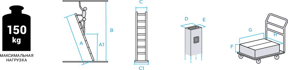 Схема: Лестница одосекционная NV121